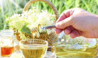 ceai flori de soc