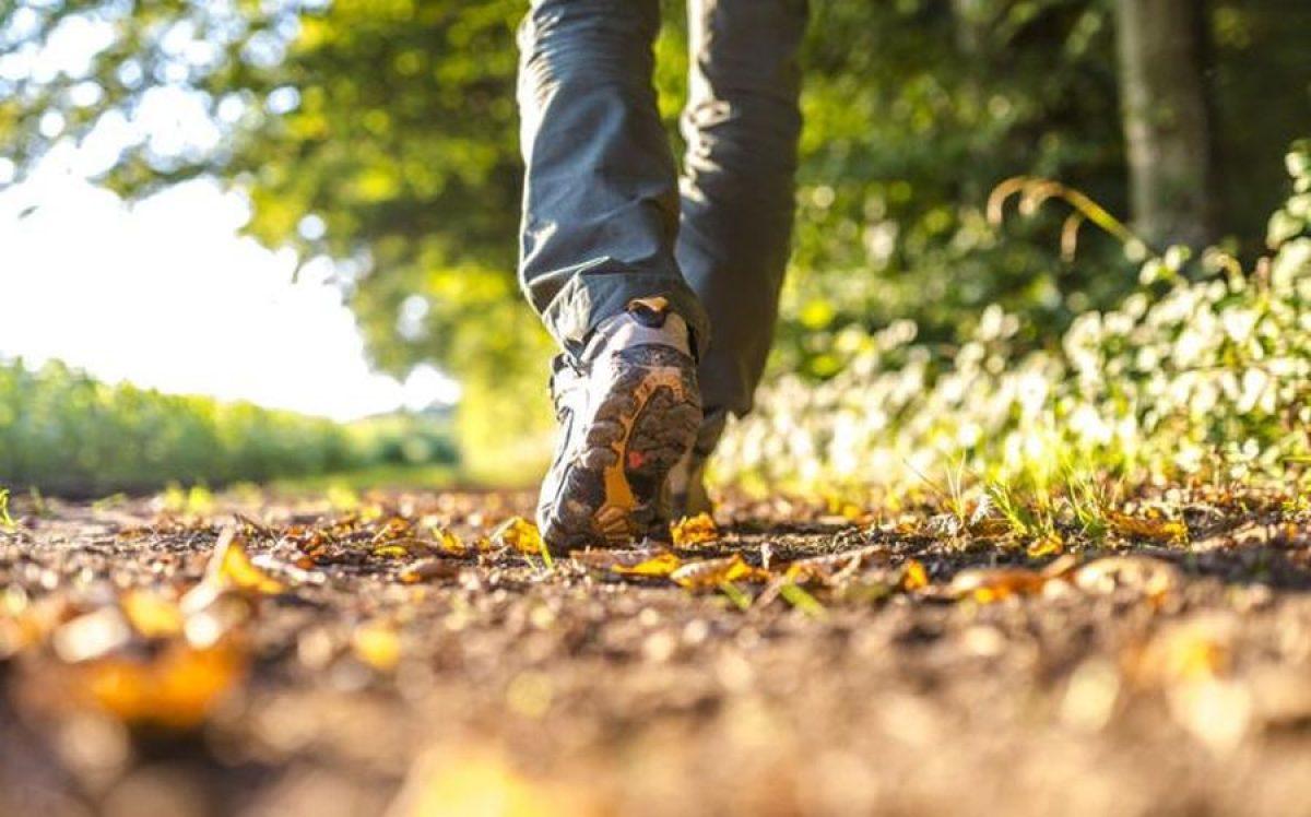 viteza de mers pe jos conectare socială