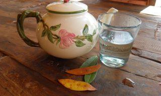 ceai de dafin