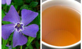 ceai de saschiu.
