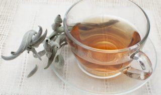 ceai-de-salvie